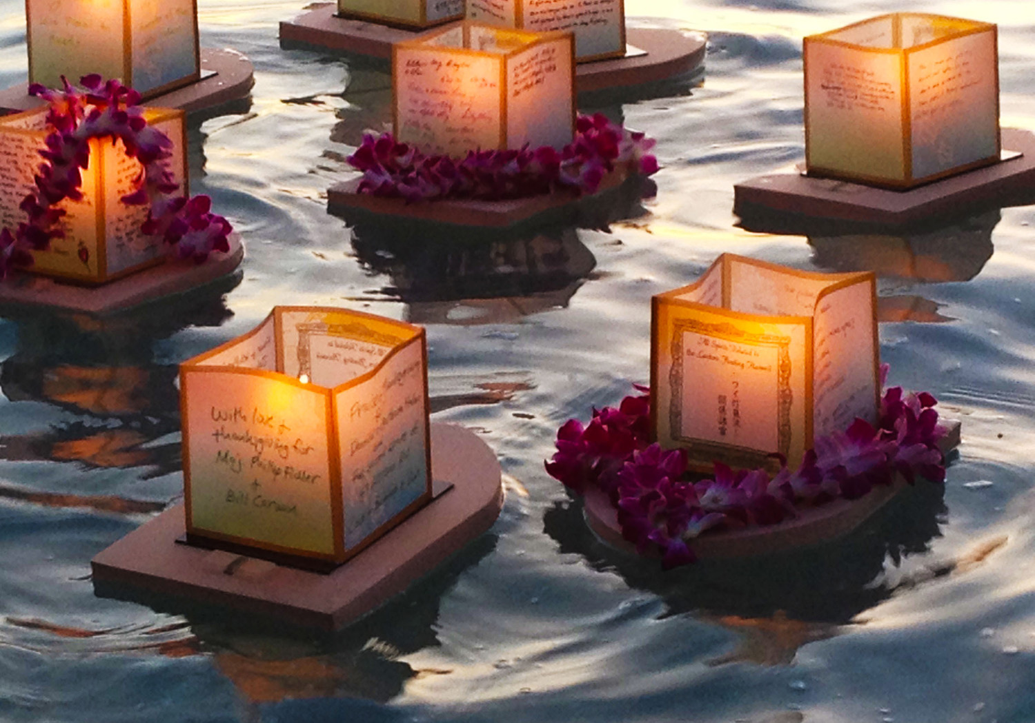film viewing of hawaii lantern floating at the university of